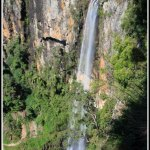 Springbrook National Park – the lure of Nature or Reality TV?