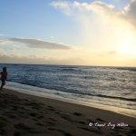 Maui we'll be back