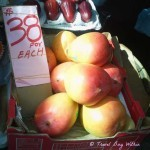 Australian Mangoes for sale