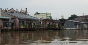 Mekong river dwellings