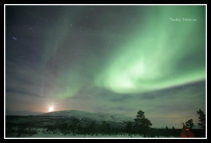 The stunning Northern Lights - captured by Robin