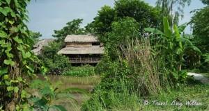 The Nguyen Shack Cai Rang