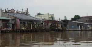 Mekong river dwellings