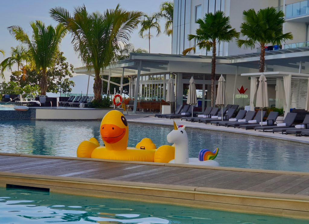 Blow up duck and unicorn toy float in a large pool