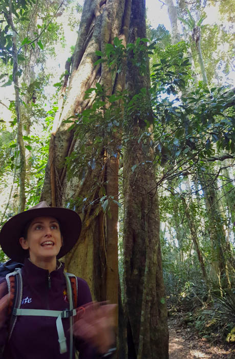 Image of a woman talking beneath the base of a large tree
