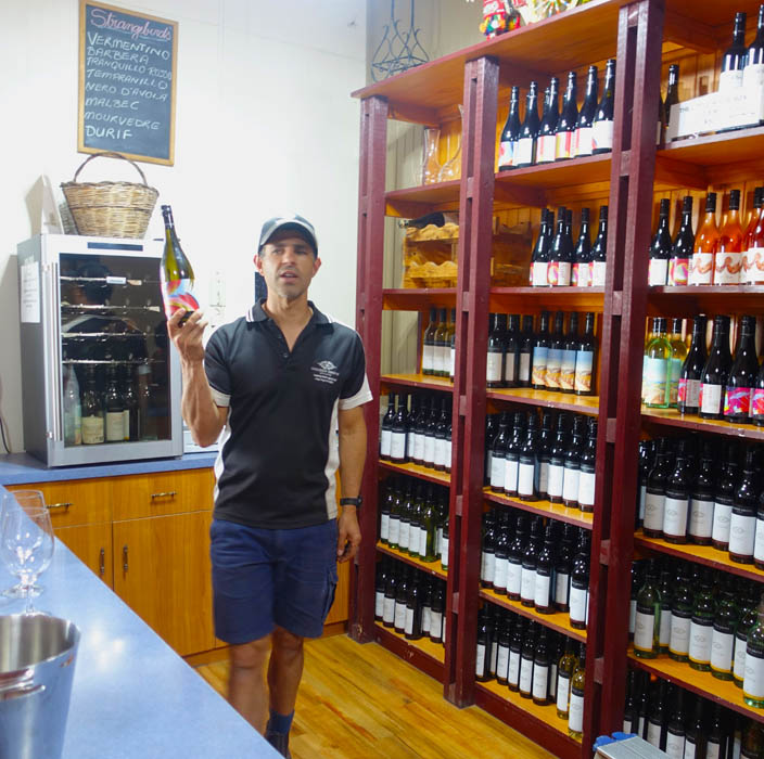 Image of a man standing in a wine cellar dressed in a short sleeved shirt and blue shorts holds a bottle of wine in his right hand