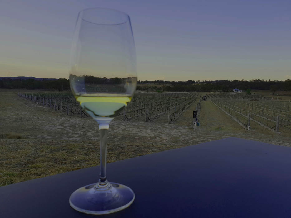 Image of a close up of a glass of wine on a table with a vineyard in teh background the glass is half filled with white wine