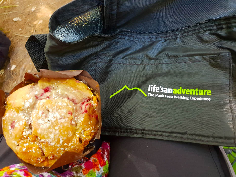 Image of a large muffin and a dark coloured lunch box with the words Life's an Adventure printed on the lunchbox