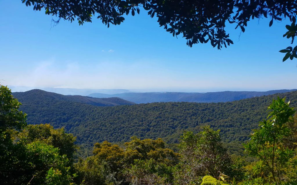 Image taken on a sunny day showing blue sky and a mountain escarpment covered in trees